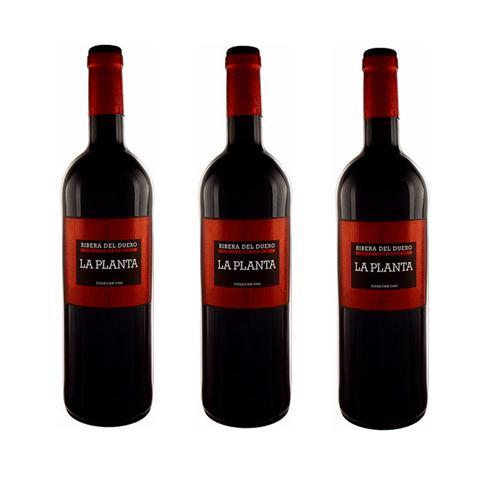 Rượu vang đỏ Arzuaga La Planta 75cl